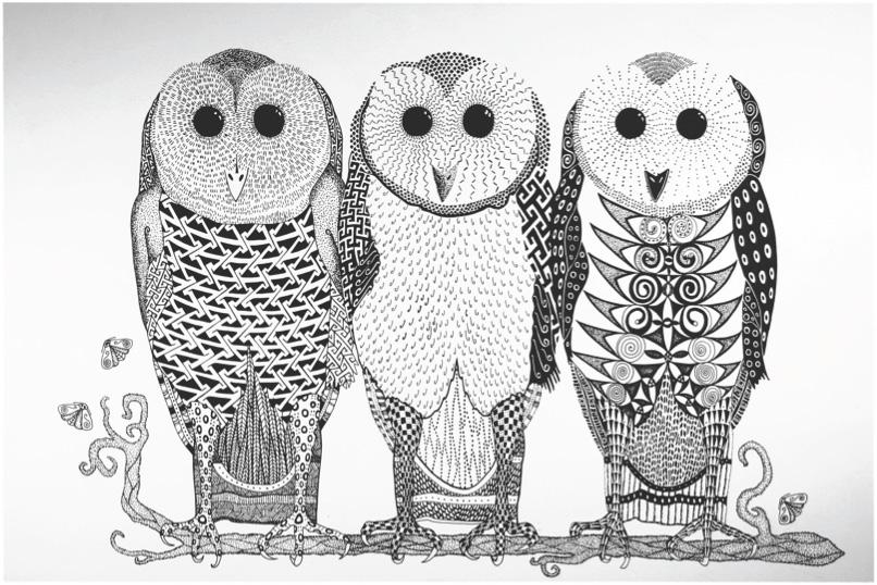 RobinColerin-owls